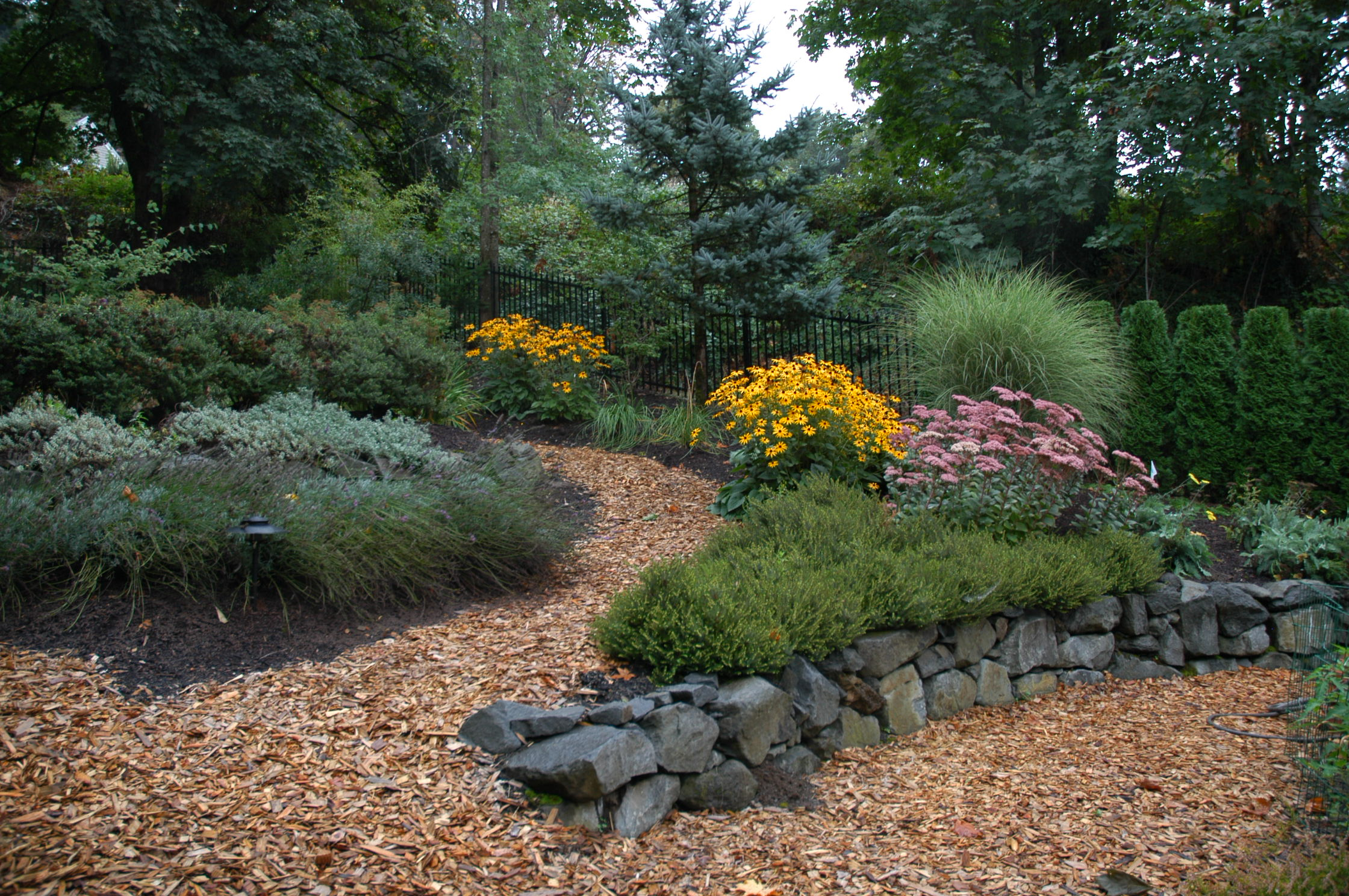Low Maintenance Backyard Landscape Design :  landscaping company specializing in lowmaintenance landscape design